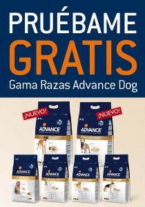 Advance Dog Gratis