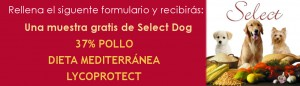 muestras-gratis-comida-perros-picart-select-dog